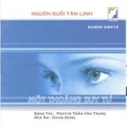 CD Một Thoáng Suy Tư